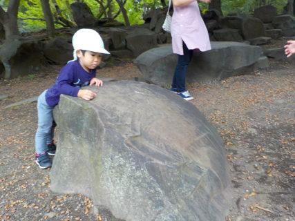 やっぱりこの大きな石が好き💛